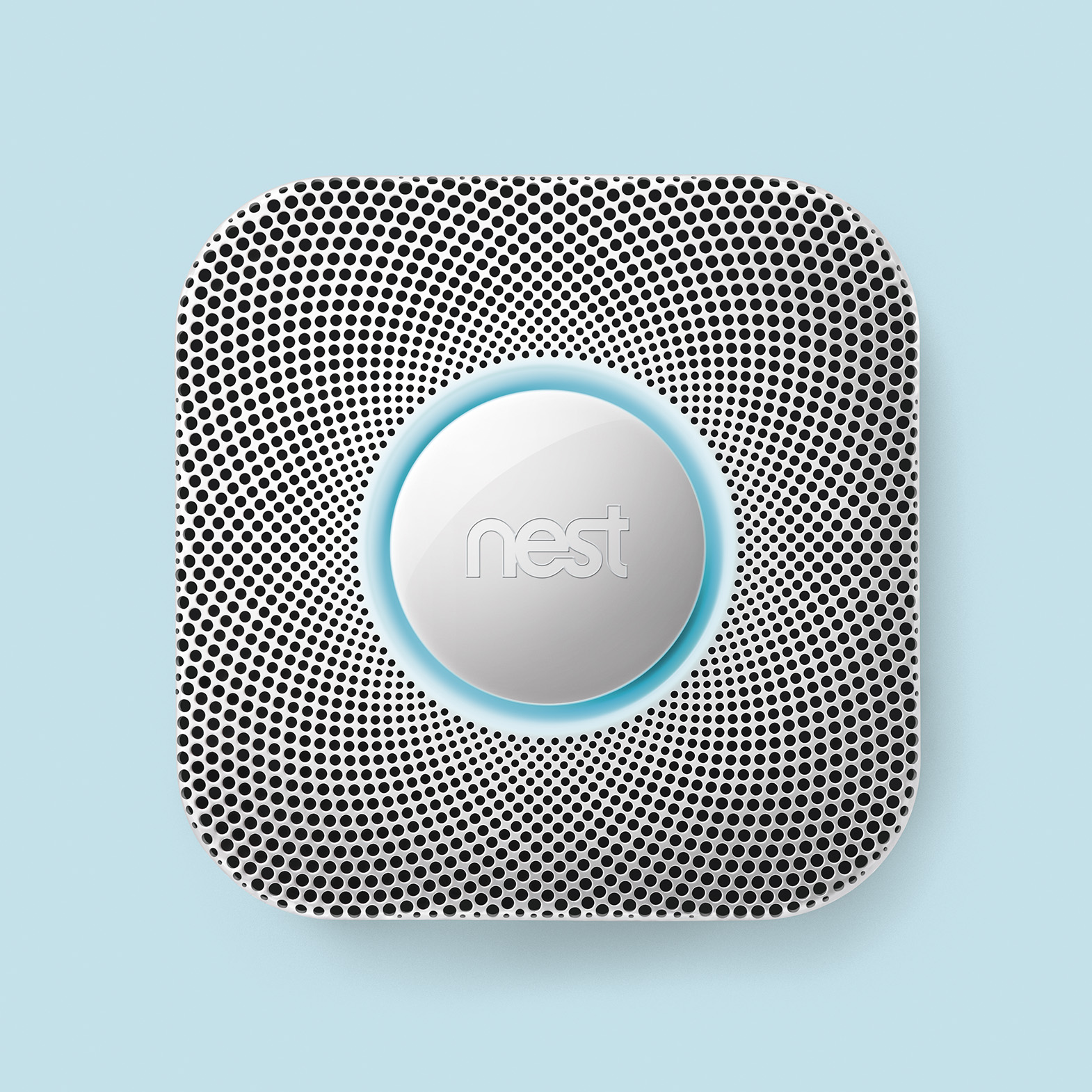 Nest_On_Light_Blue_1570px